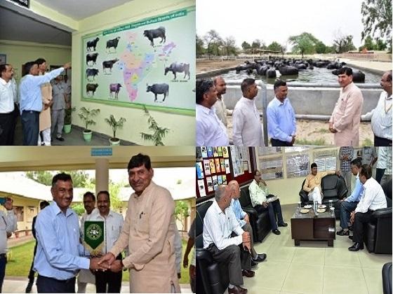 माननीय श्री मोहन भाई कुंडारिया,केन्द्रीय कृषि एवं किसान कल्याण राज्य मंत्री,भारत सरकार का केन्द्रीय भैंस अनुसंधान संस्थान में दौरा