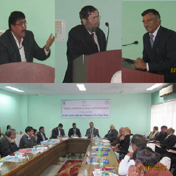 """Meeting on""""Strengthening Extension Services"""" on convergence mode for dairy development"""