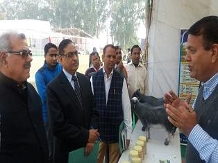 National Dairy Mela 23-25 November, 2017