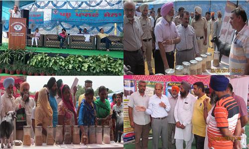 ICAR- CIRB participated in Pashu Palan Mela at GADVASU, Ludhiana during Sept., 22-23, 2016