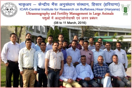 Training Course on Ultrasonography and Fertility Management in Large Animals