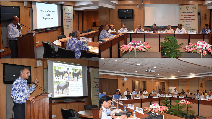ICAR-CIRB and ISBD jointly organized brainstorming workshop on 'Use of cloned bull semen for breed improvement'