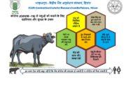 COVID -19 पर केंद्रीय भैंस अनुसंधान संस्थान द्वारा किसानो के लिए सलाह और सुझाव