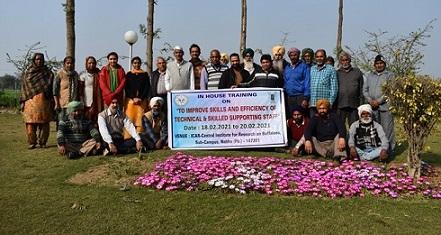 HRD Training , Sub-Campus, Nabha